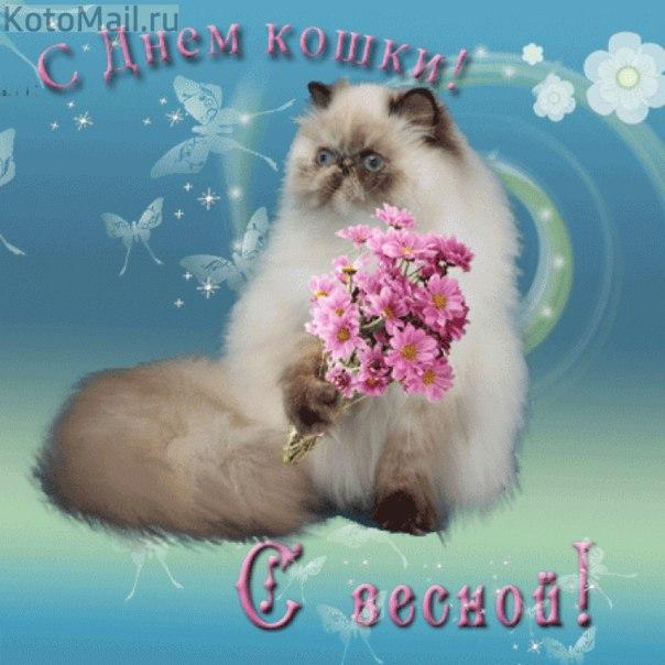 http://best-nn.ucoz.ru/raznoe/mHcFSy0NUrQ.jpg